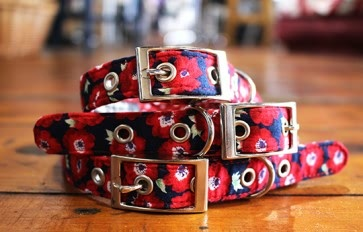 Elizabeth floral dog collar