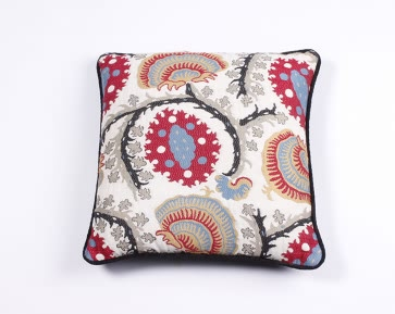 Embroidered Red/Blue Cushion