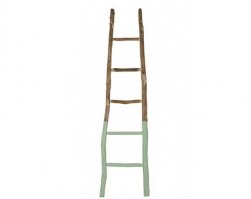 Natural Wood Leaning Ladder - Dipped Green