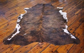 Cowhide Exotic Medium