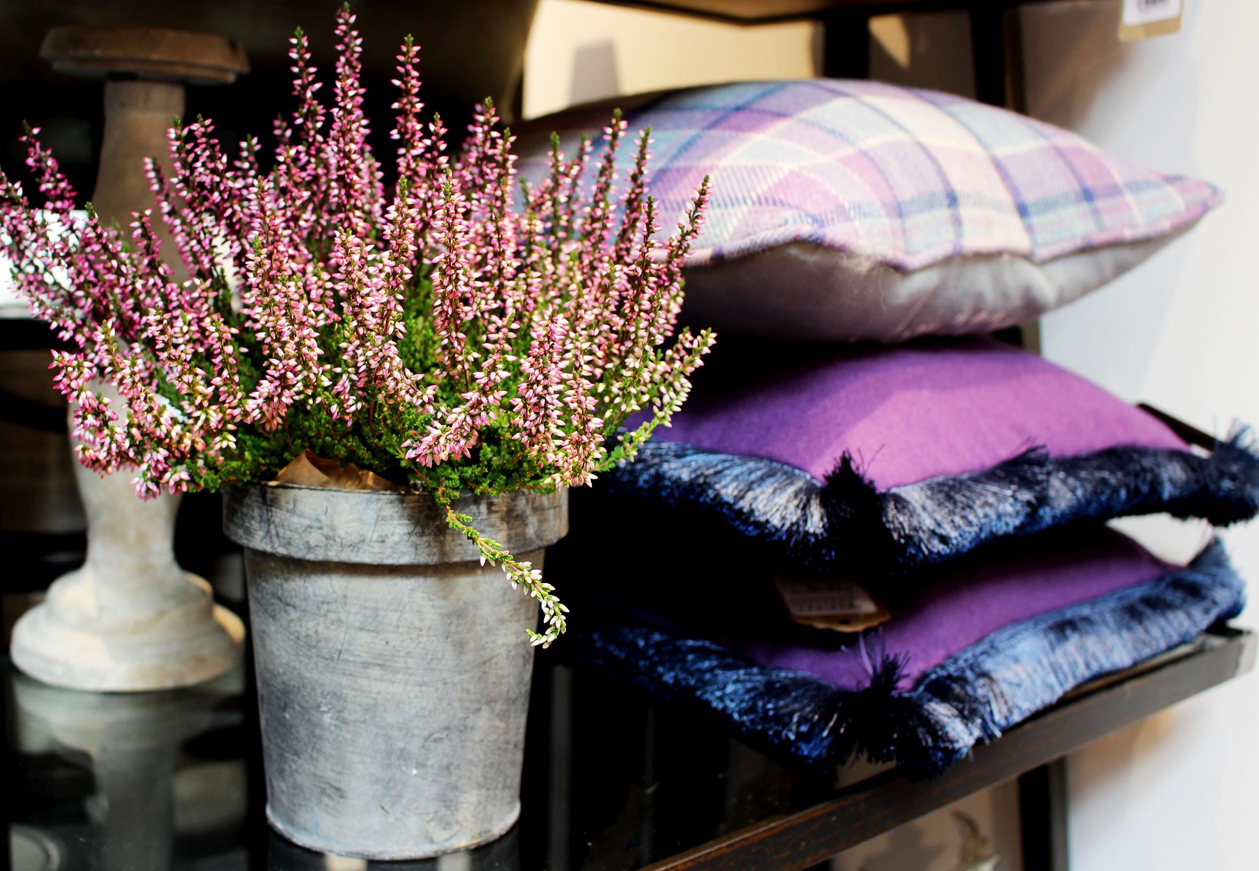 purple, cushions, floral