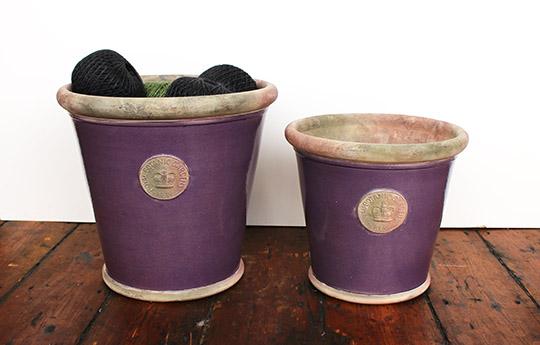 kew garden plant pot