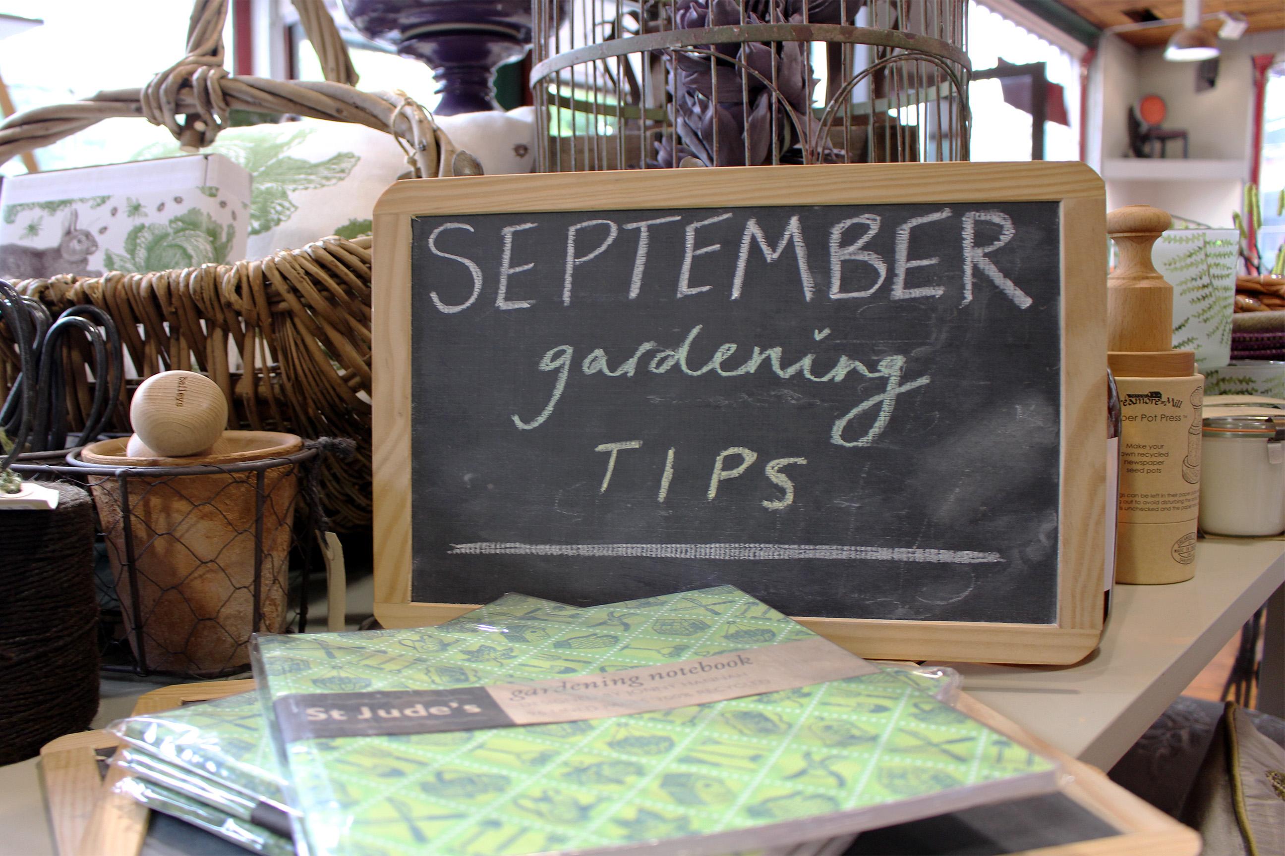 September gardening tips